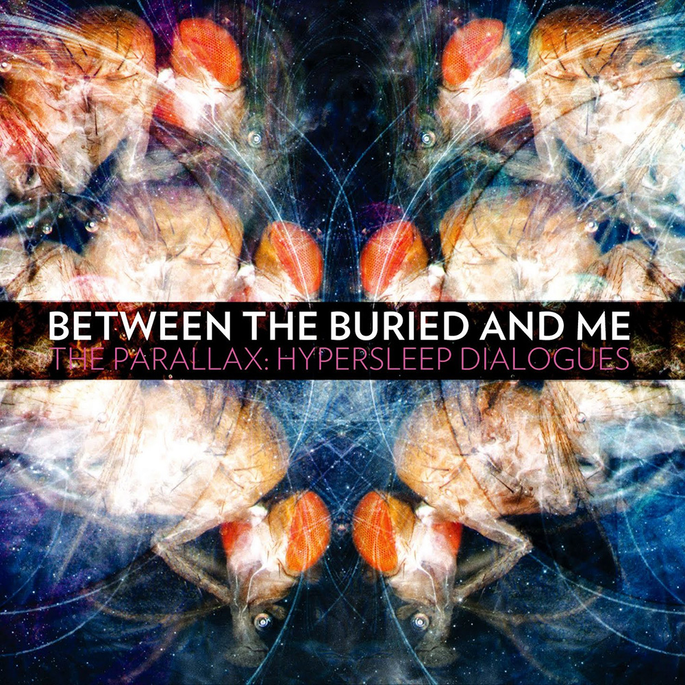 Between The Buried And Me Music Fanart Fanart