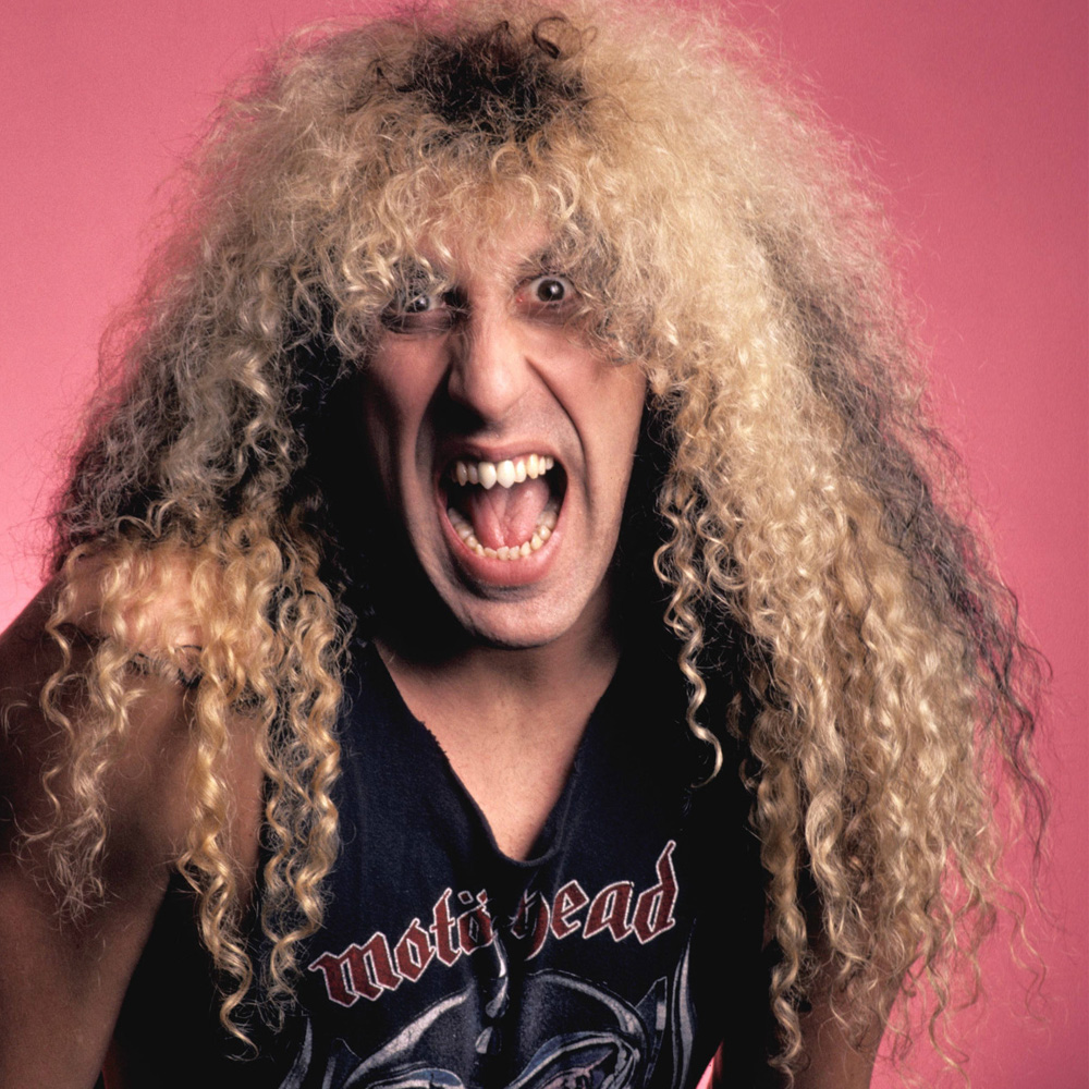 Image result for dee snider