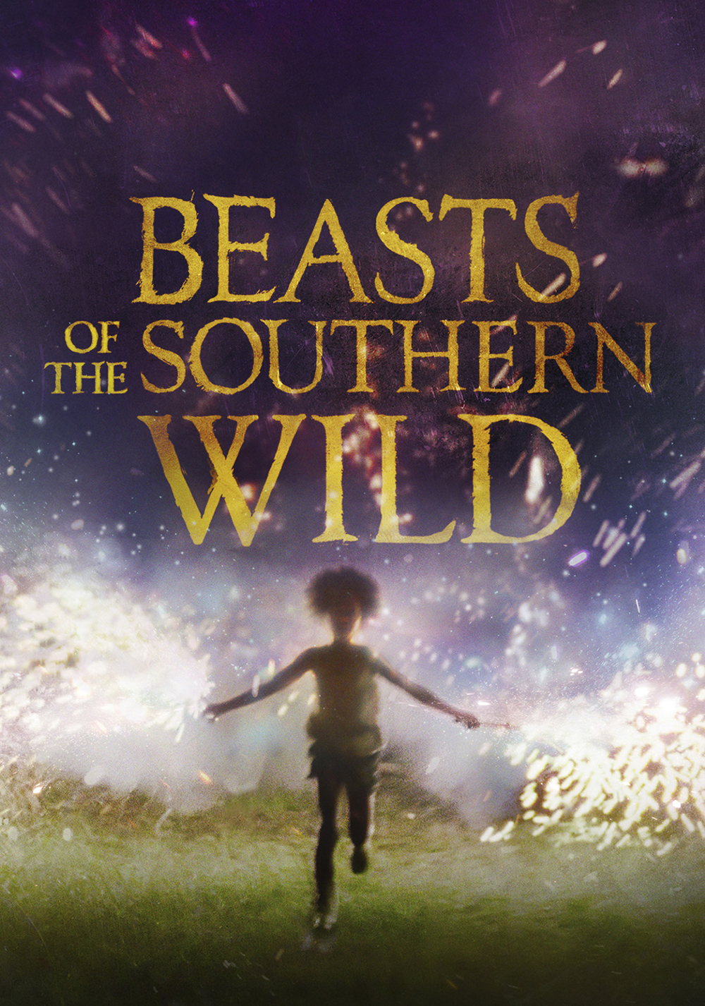 Image result for beasts of the southern wild poster